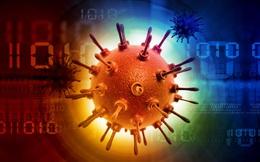 Những sự thật còn chưa biết về virus