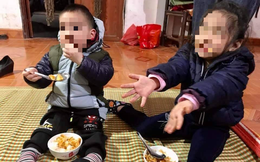 Vụ 2 đứa trẻ bị bỏ rơi trên đê sông Hồng: Nỗ lực nhập khẩu vẫn chưa thành