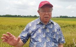 Giáo sư Võ Tòng Xuân nhận huân chương cao quý của Chính phủ Nhật Bản