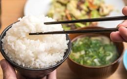 Ăn nhiều cơm có tốt không?