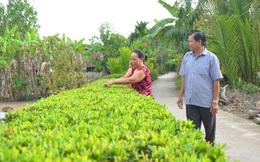 Nông thôn Định Hòa đang bừng lên sức sống mới