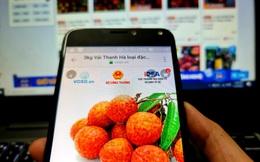 Ngồi nhà mua đủ loại trái cây mùa vụ với giá ưu đãi