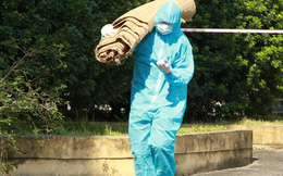Biến thể SARS-Cov-2 ở Hà Nam là chủng Anh, tốc độ lây nhanh hơn 70%