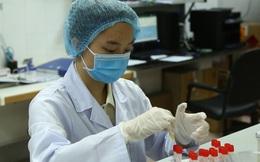 Đại diện Nanogen: Việc xin cấp phép khẩn cấp vaccine Nano Covax không nóng vội