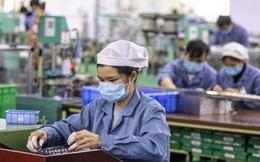 BHXH Việt Nam: Tuyệt đối không phát sinh thêm thủ tục hỗ trợ lao động bị ảnh hưởng bởi Covid-19