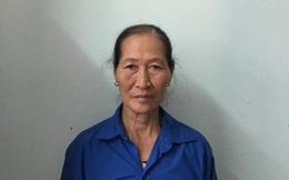Khởi tố người phụ nữ làm cháy gần 9ha rừng ở Bắc Giang
