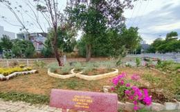 Biến đất hoang thành đường hoa và công viên mini