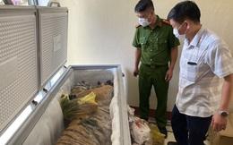 Hà Tĩnh: Phát hiện hổ đông lạnh nặng 160kg trong nhà dân