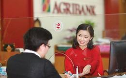 Năm 2019 - Agribank đạt nhiều giải thưởng uy tín