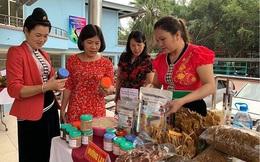 Điện Biên: Hỗ trợ triển khai mô hình du lịch sinh thái