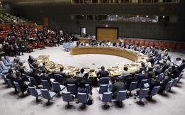Việt Nam nhận vai trò Chủ tịch ngay ngày đầu trở lại Hội đồng Bảo an Liên hợp quốc