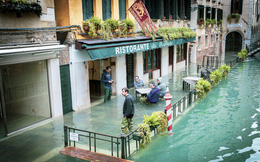 Nữ nhiếp ảnh gia dầm mình chụp Venice trong cơn lũ lịch sử