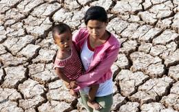 1,5 triệu phụ nữ, trẻ em ĐBSCL sẽ bị ảnh hưởng nghiêm trọng bởi xâm nhập mặn