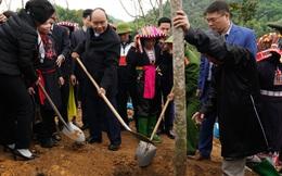 """Thủ tướng dự lễ hưởng ứng """"Tết trồng cây đời đời nhớ ơn Bác Hồ"""""""
