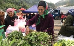 Giật mình cây thuốc phiện bán ở chợ vùng biên