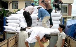 Xuất gạo dự trữ quốc gia cho tỉnh Ninh Thuận