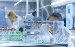 Trung Quốc bắt đầu thử nghiệm trên chuột vaccine ngừa virus corona chủng mới