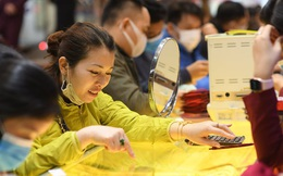 Sau ngày vía Thần Tài, giá vàng trong nước đồng loạt giảm tới hơn 500.000 đồng/lượng