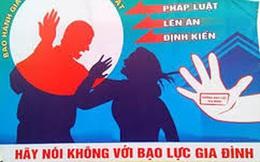 Chính phủ chỉ đạo đẩy mạnh phòng, chống bạo lực gia đình
