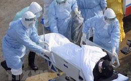 Cập nhật dịch corona trên thế giới: Gần 3.000 ca nhiễm mới, 562 người tử vong
