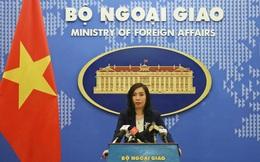 Việt Nam theo dõi sát sao diễn biến dịch do virus corona