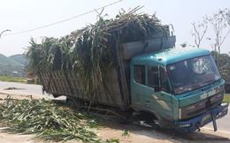 Nghệ An: Bị xe tải tông, một học sinh lớp 10 tử vong tại chỗ