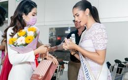 Hoa khôi Vũ Hương Giang tặng khẩu trang cho Hoa hậu Siêu quốc gia 2019