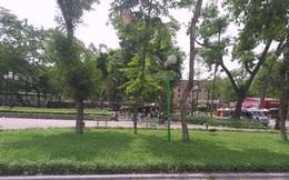 Cách ly giáo viên tiếng Anh người nước ngoài diện F1 lang thang ở vườn hoa Hà Nội vì thất nghiệp