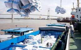 Dừng xuất khẩu gạo dưới mọi hình thức để đảm bảo an ninh lương thực do tác động của dịch Covid-19