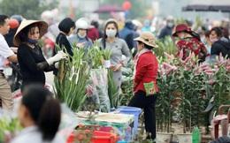 Thông báo khẩn tìm người đã đến chợ hoa Mê Linh, tránh lây lan dịch bệnh Covid-19 ra cộng đồng
