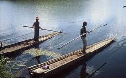 Giải mã nguyên nhân hơn 1.700 người thiệt mạng trong một đêm ở hồ Nyos