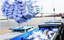 Thủ tướng chỉ đạo báo cáo việc xuất khẩu  400.000 tấn gạo trong đêm