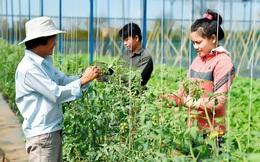 Hà Nội: Nông nghiệp, công nghệ, đầu tư công là mũi nhọn phát triển kinh tế thời Covid-19