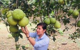 """Phụ nữ Đồng Nai xây dựng nông thôn mới: Điểm nhấn từ """"5 không 3 sạch"""""""