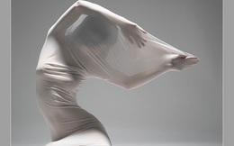 Họa sĩ tự ý chuyển thể tác phẩm ảnh nude của Thái Phiên đã xóa tranh