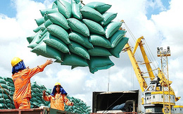 """Bộ Tài chính đề nghị Bộ Công an vào cuộc vụ """"lình xình"""" hạn ngạch xuất khẩu gạo"""