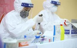 Thêm 1 ca được công bố khỏi bệnh, cả nước còn 43 bệnh nhân Covid-19 đang điều trị
