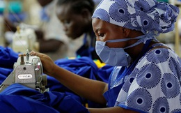 Gần một nửa lực lượng lao động toàn cầu có nguy cơ mất sinh kế