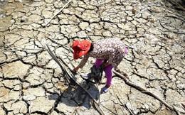 Xâm nhập mặn tại Đồng bằng sông Cửu Long sẽ ở mức cao trong tháng 4