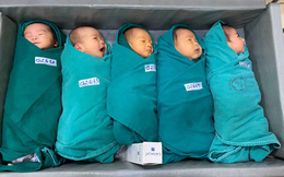 5 em bé chào đời trong khu vực cách ly của Bệnh viện Bạch Mai