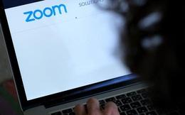 Nửa triệu thông tin đăng nhập vào Zoom bị rao bán trên mạng