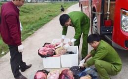 Hà Tĩnh: Bắt quả tang xe khách vận chuyển thịt, nội tạng động vật hôi thối