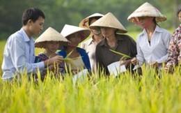 Agribank và TƯ Hội Nông dân Việt Nam tăng cường phối hợp triển khai hiệu quả chính sách 'Tam nông'