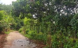 Vụ mẹ kế đánh con chồng ở Bình Phước: Kiến nghị khẩn cấp tới Viện KSND tối cao