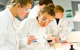 Ủng hộ và đầu tư cho phụ nữ và trẻ em gái tham gia nghiên cứu khoa học
