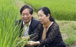 Tôn vinh 53 tác giả là 'Nhà khoa học của nhà nông'