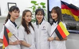 Đã có 352 học viên điều dưỡng viên sang Đức học nghề và làm việc