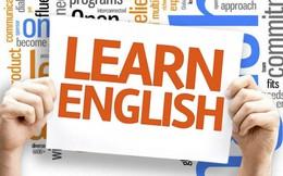 5 tiêu chí chọn trung tâm ngoại ngữ