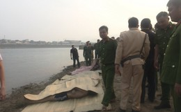 Phó Chủ tịch TP. Hòa Bình thông tin về 8 học sinh đuối nước khi tắm sông Đà