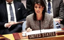 Nữ Đại sứ Mỹ tại Liên hợp quốc từ chức